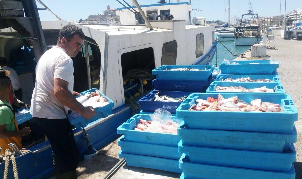pescador Ibiza