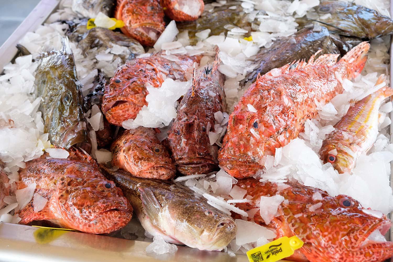 pescado-ibiza- peix-nostrum